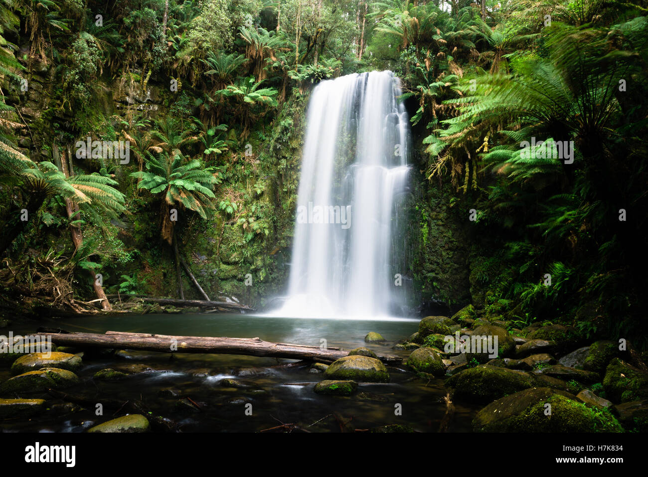 Beauchamp Falls, Great Otway National Park, Victoria, Australia - Stock Image