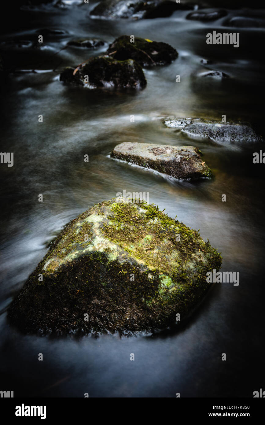 Detail of river rocks at Hopetoun Falls, Great Otway National Park, Victoria, Australia - Stock Image