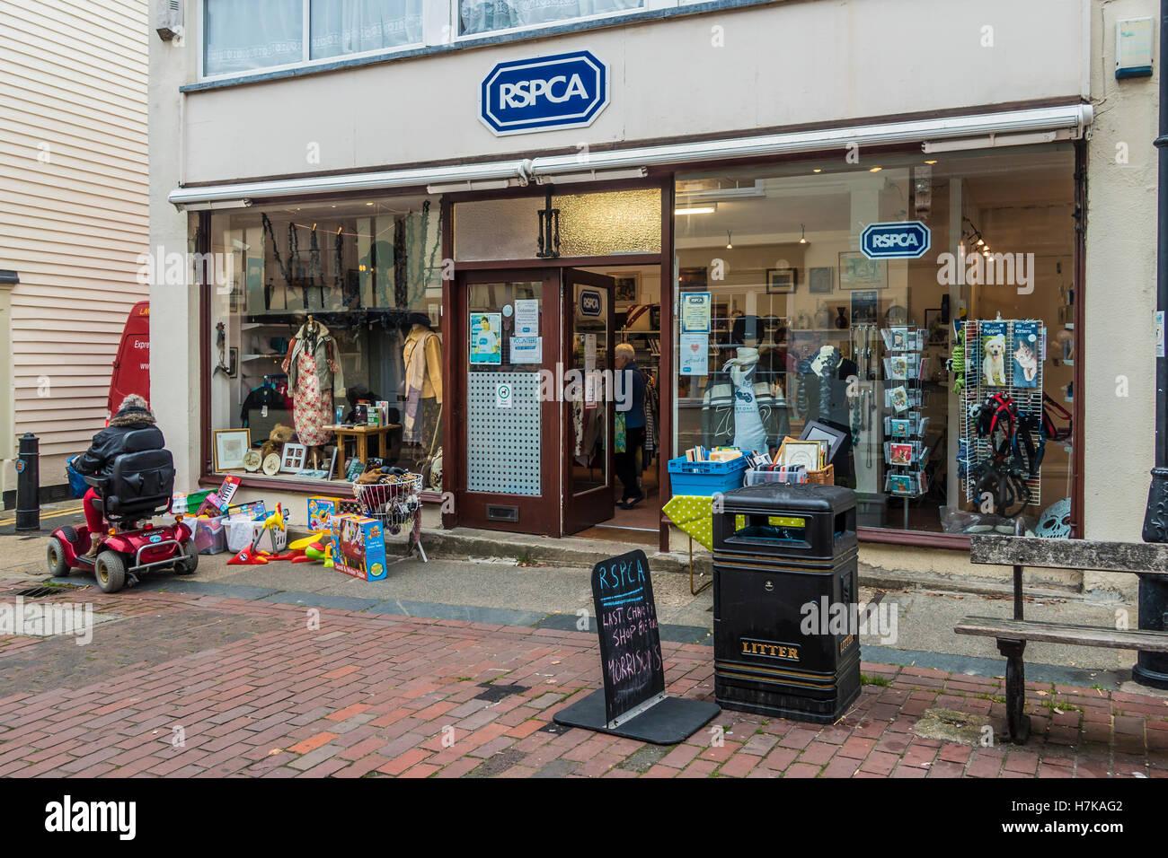 RSPCA Charity Shop Faversham Kent England - Stock Image