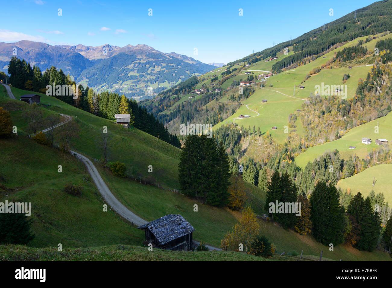 Hainzenberg: Gerlosbach valley, alp alpine pasture, Zillertaler Alpen, barns, Zell-Gerlos, Tirol, Tyrol, Austria - Stock Image