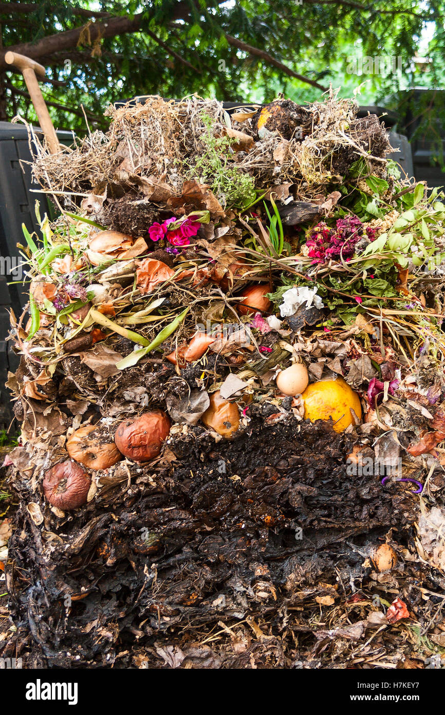Compost pile opened up - Stock Image