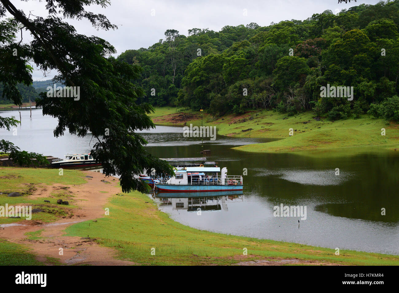 Thekkady Tourist attraction in Kerala India Thekkady Lake Boating view at Periyar National Park western ghats forests - Stock Image