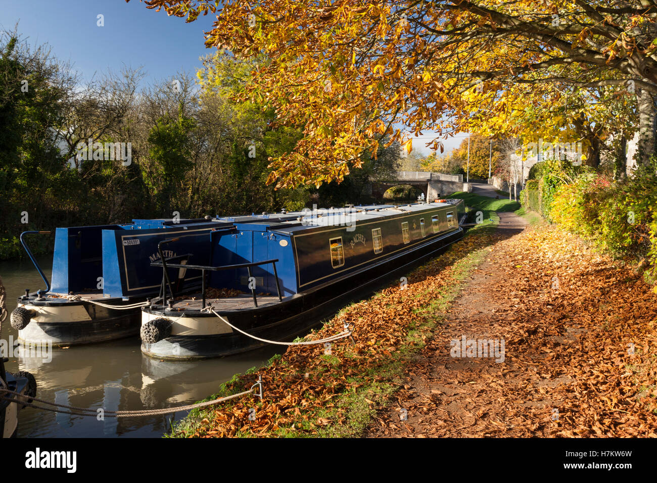 Kennet and Avon Canal autumn, Bradford on Avon, Wiltshire - Stock Image