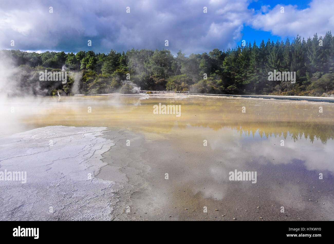 Water pond in the wonderland of the Wai-o-tapu geothermal area, near Rotorua, New Zealand - Stock Image
