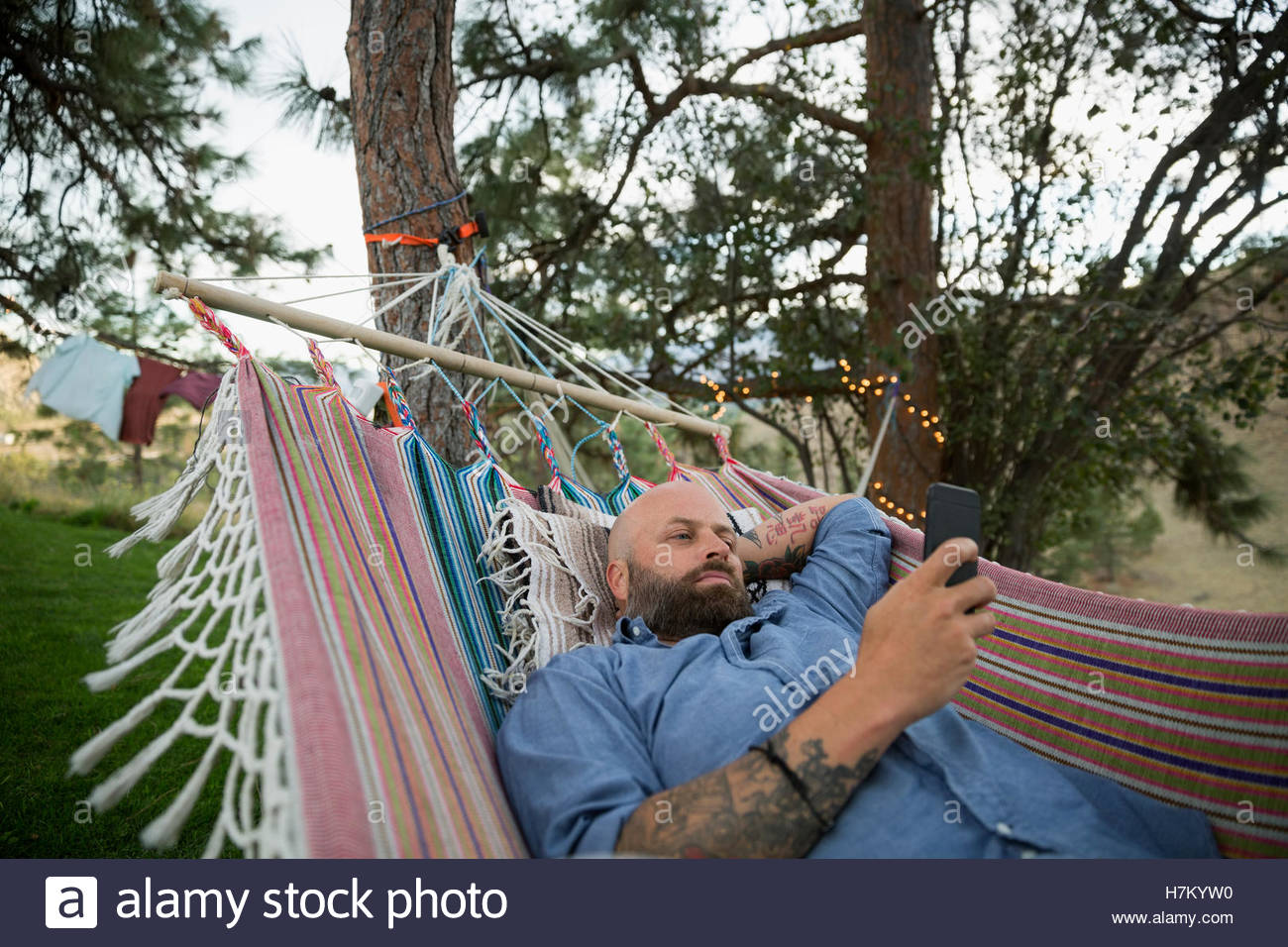 Man in hammock texting with cell phone - Stock Image