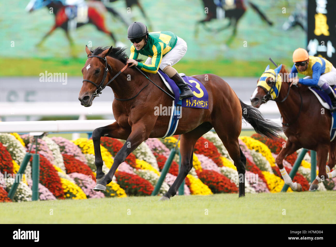 Kyoto, Japan. 23rd Oct, 2016. (L-R) Satono Diamond ( Christophe Lemaire), Air Spinel (Yutaka Take) Horse Racing - Stock Image
