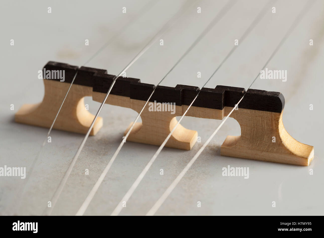 Banjo bridge close up - Stock Image