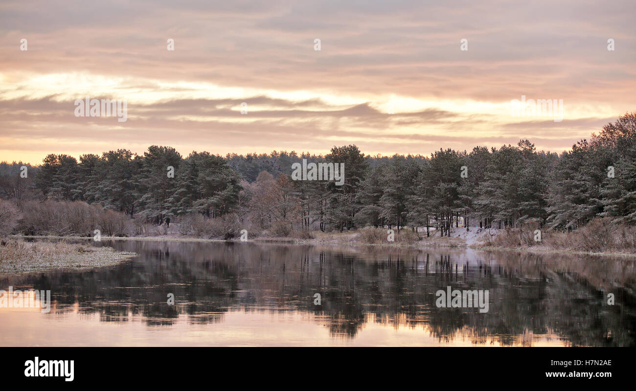 Cloudy autumn dawn. First snow on the autumn river. Fir trees on riverbank. Belarus autumn scene - Stock Image
