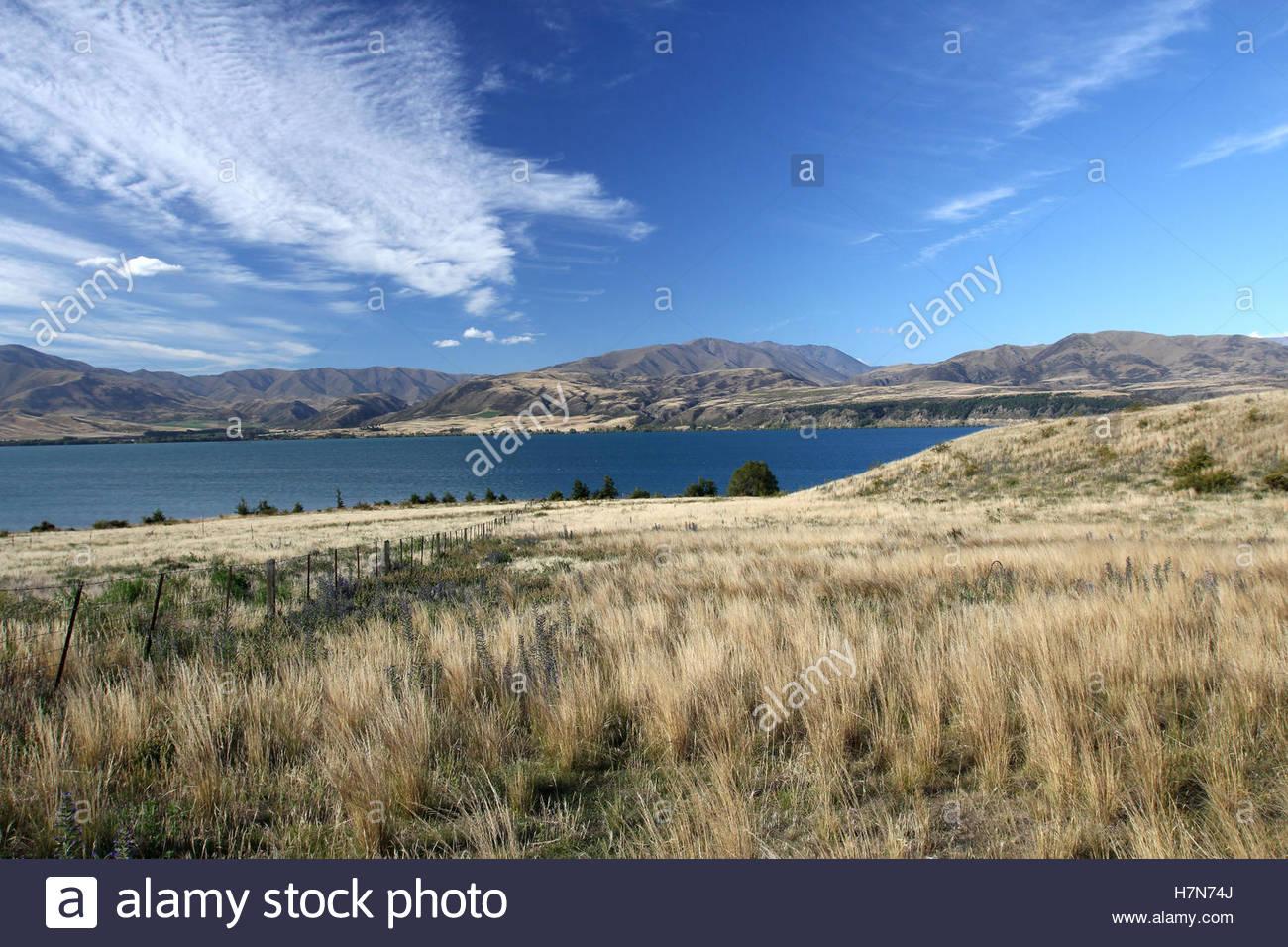 landscape near otematata, south island, new zealand - Stock Image