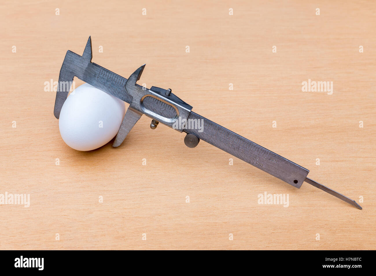 Vernier caliper measuring white chicken egg on wood - Stock Image