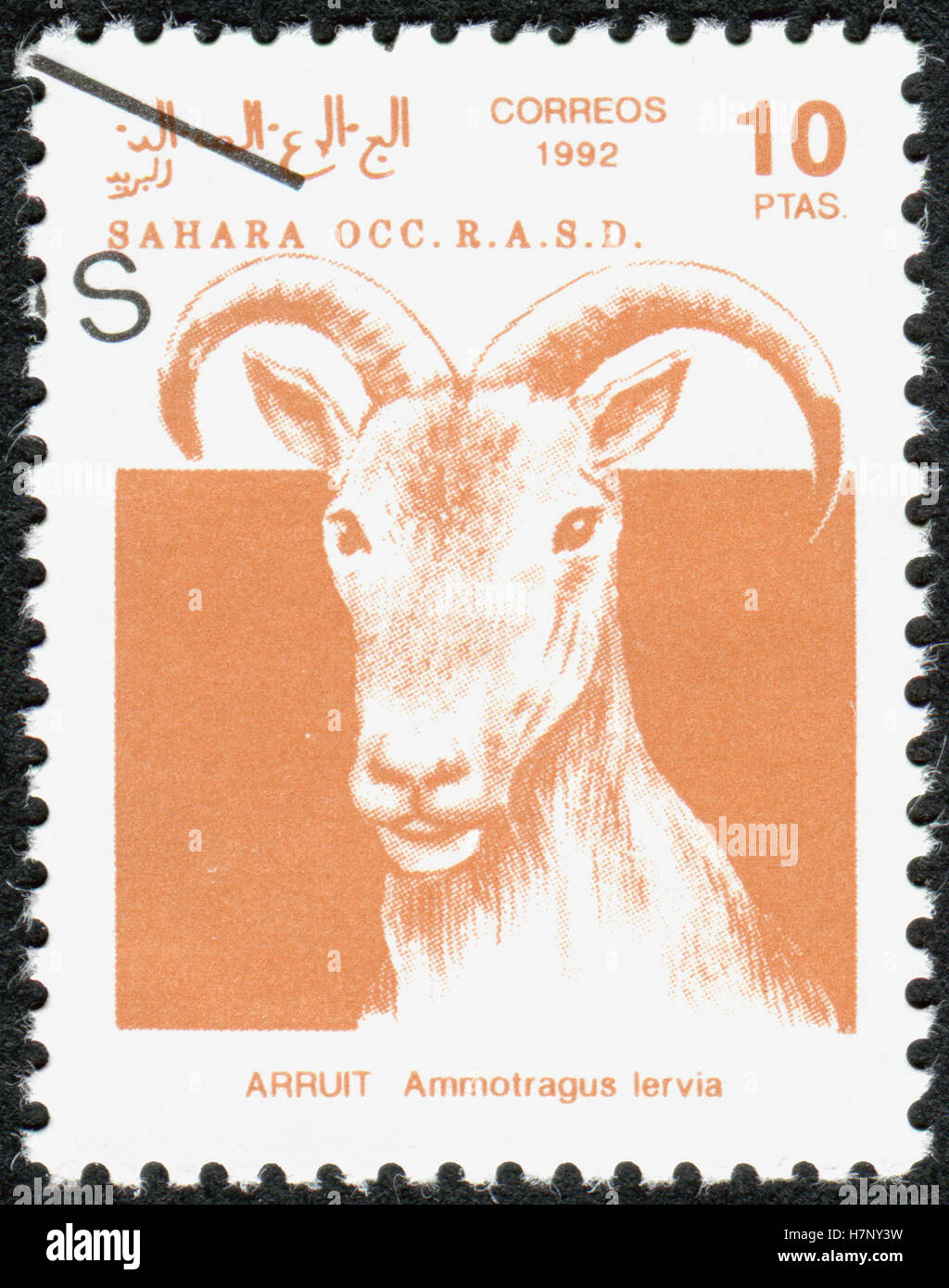 A stamp printed in Sahrawi Republic, shows the animal Barbary sheep (Ammotragus lervia) - Stock Image