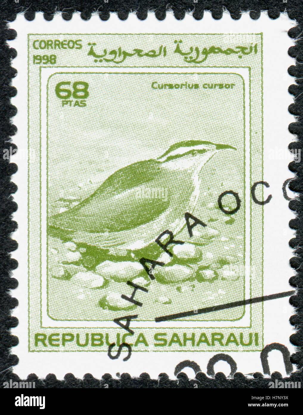 A stamp printed in Sahrawi Republic, shows the cream-coloured courser (Cursorius cursor). - Stock Image