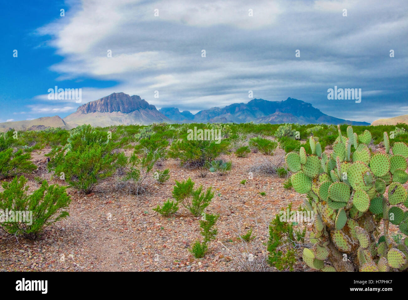 Chisos Mountains range rise above the floor of Chihuahuan Desert in Big Bend National Park Texas Stock Photo