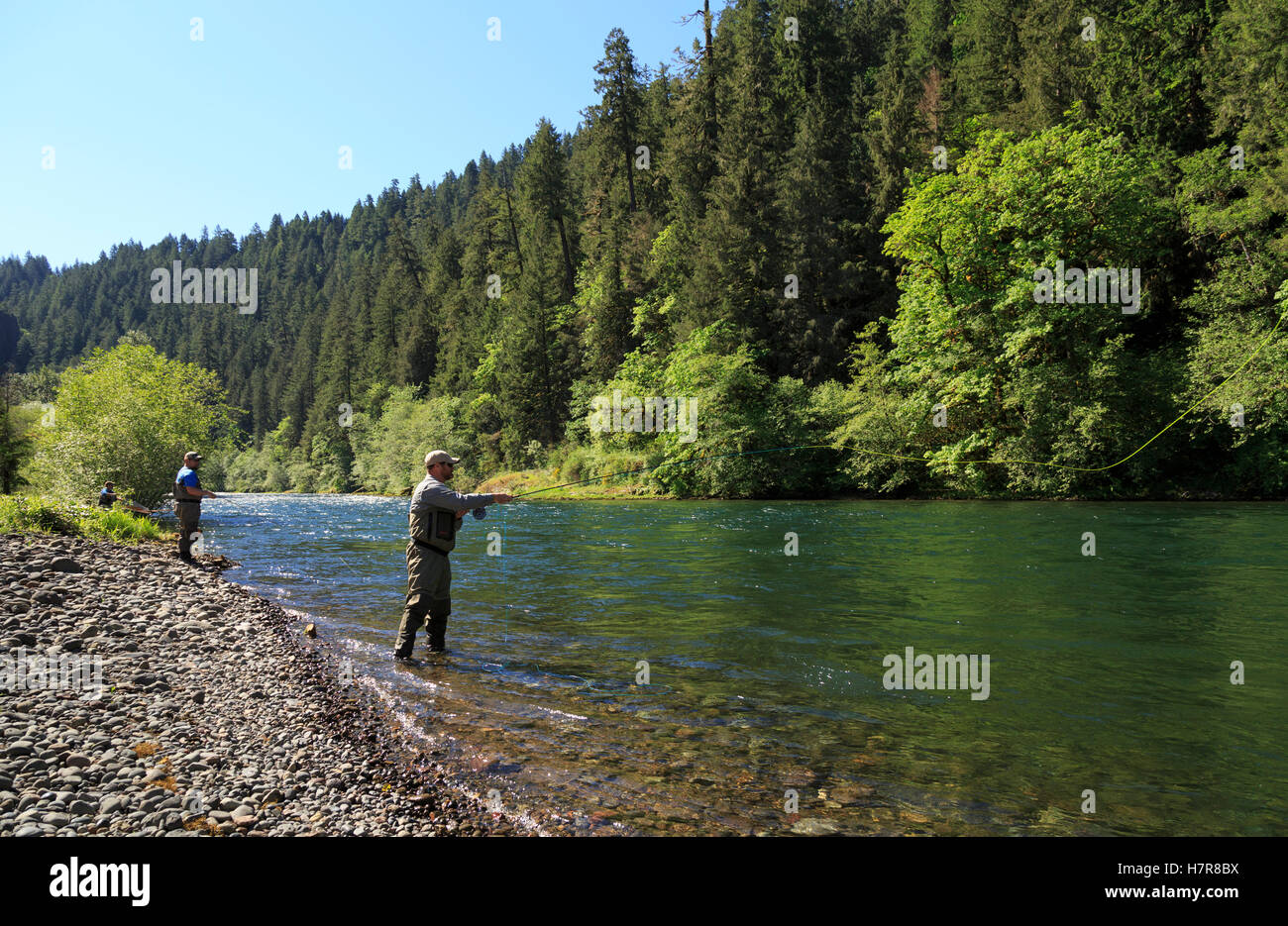 Project Healing Waters Fly Fishing program on the McKenzie River, Oregon. HW  works with disables veterans - Stock Image