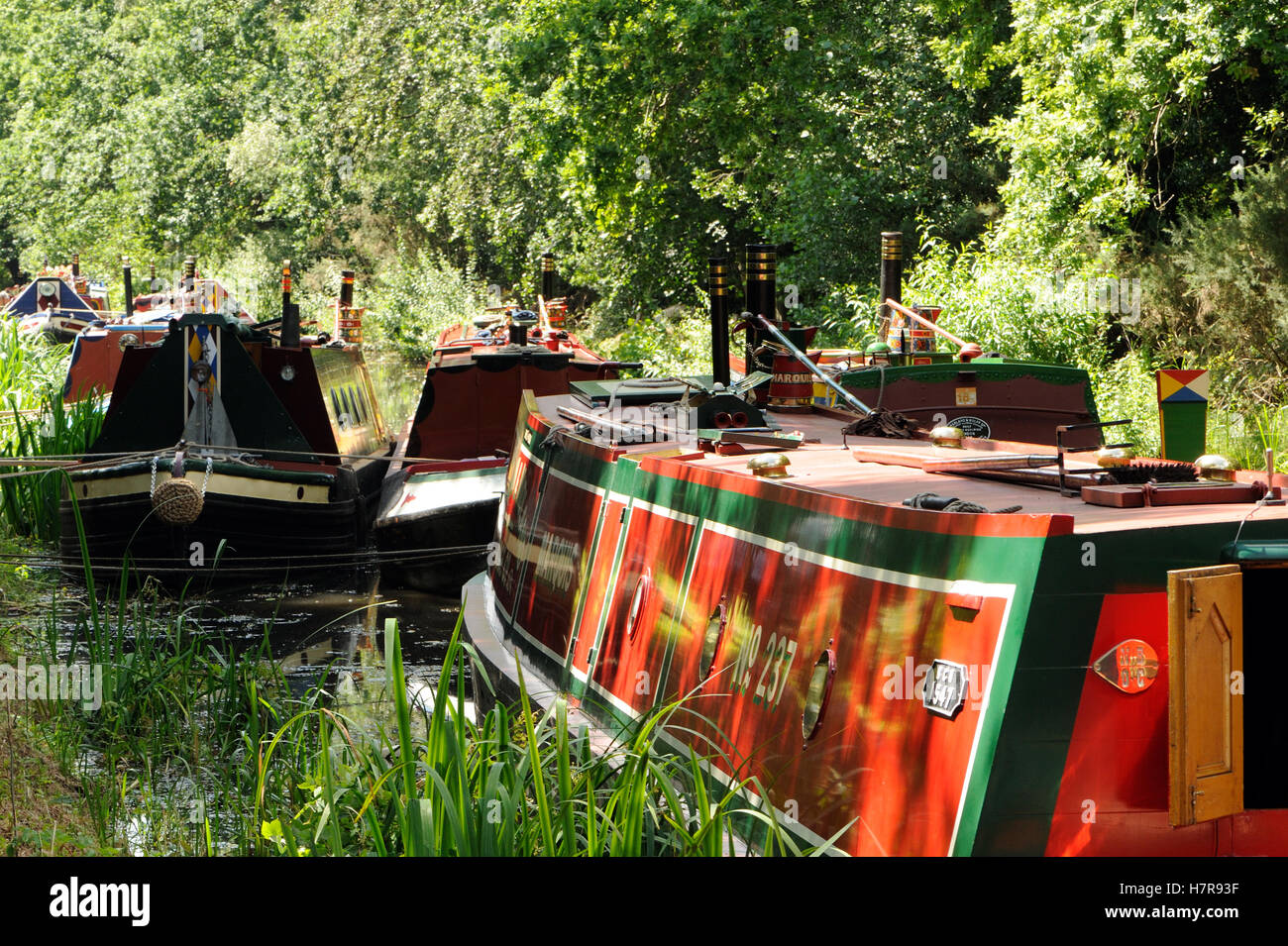 Long boats moored on the Basingstoke canal, Woking, Surrey. UK - Stock Image