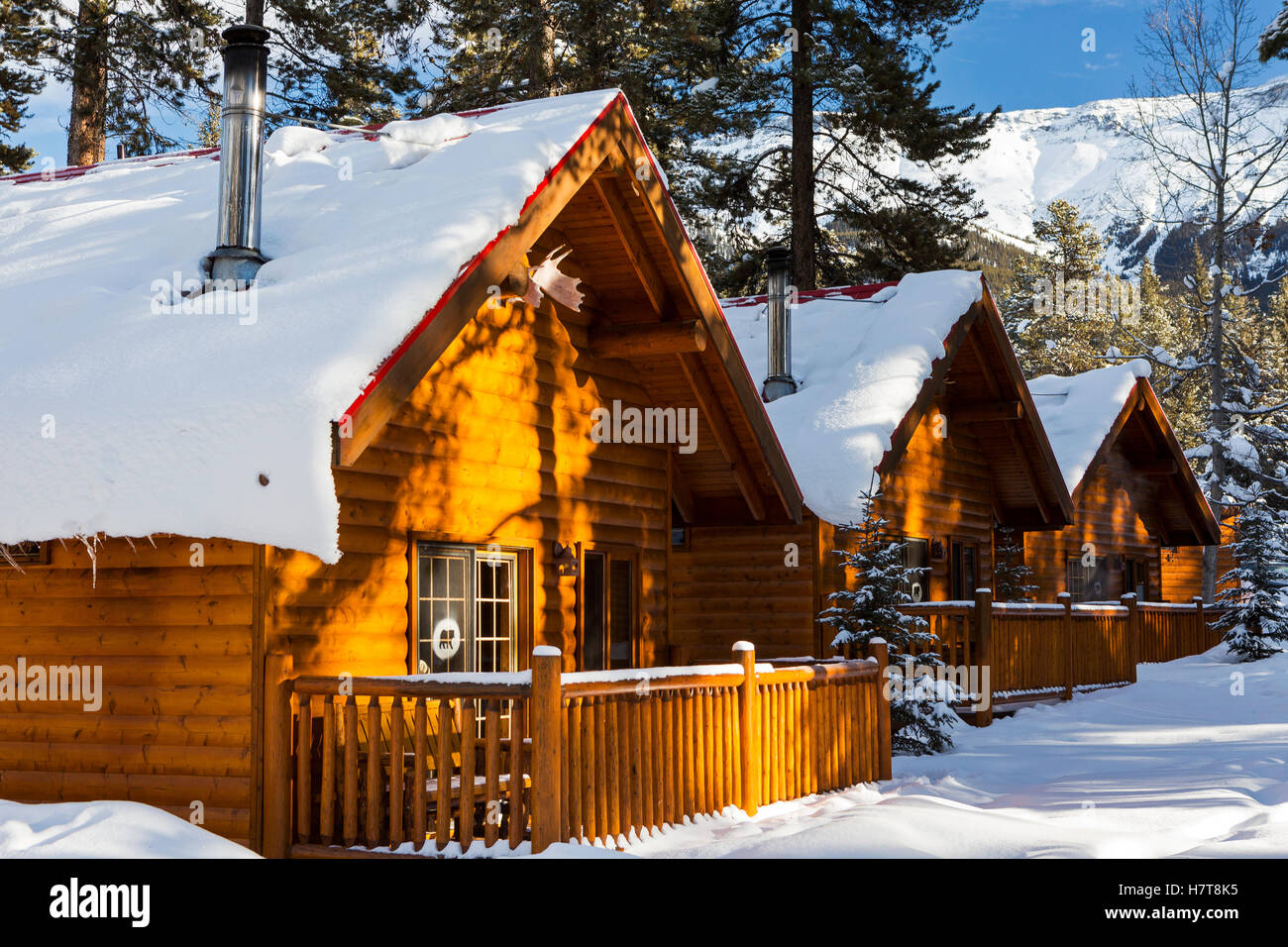 fern hook in cabins private built deluxe city a newly crescent rental vacation cabin