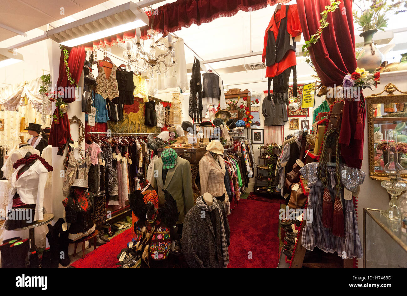 Carrington Bazaar, antiques and collectibles store, Lismore, NSW, Australia - Stock Image