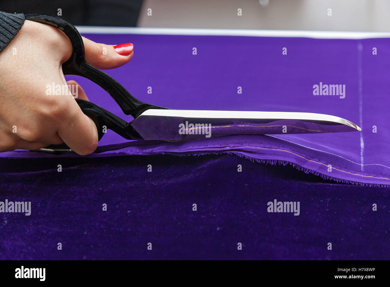 Scissors and violet textile. Close up photo if the female hand with the scissors cutting the violet fabric. Stock Photo