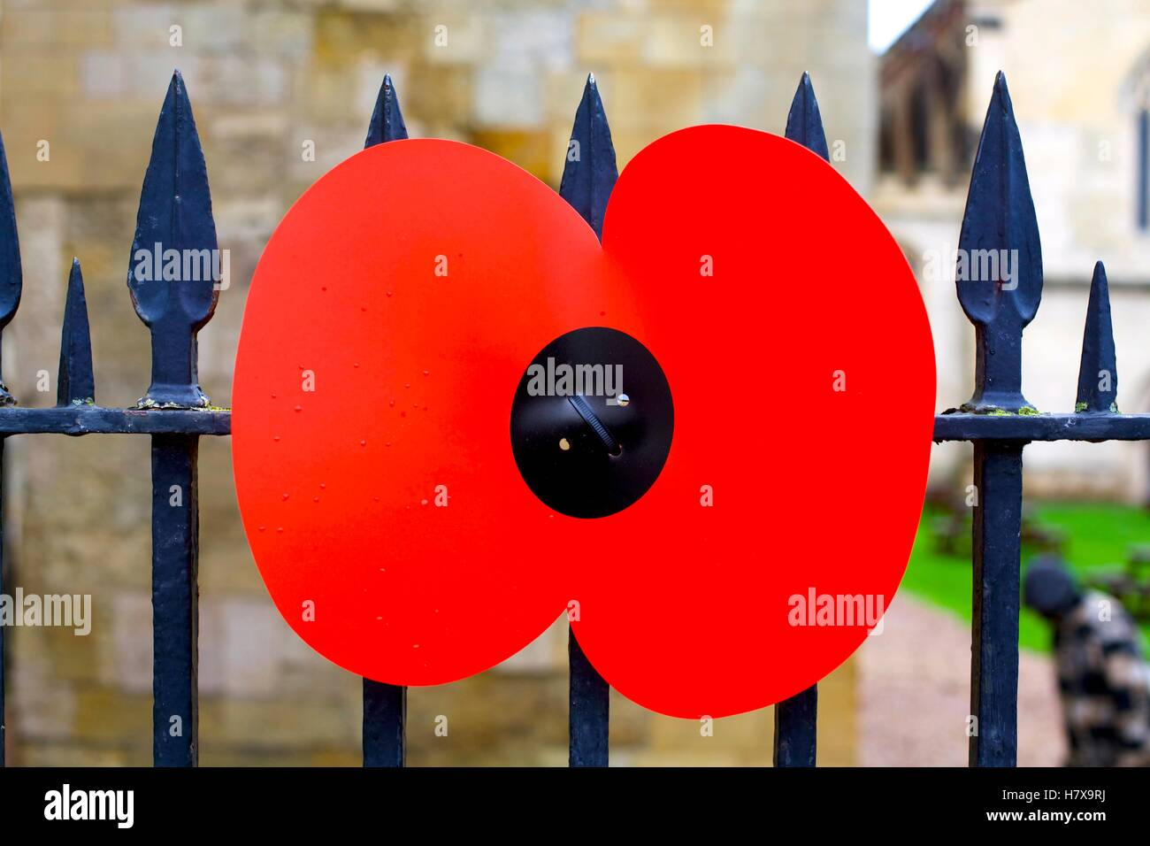 Giant poppy attached to the railings of Exeter Cathedral, Devon - Stock Image