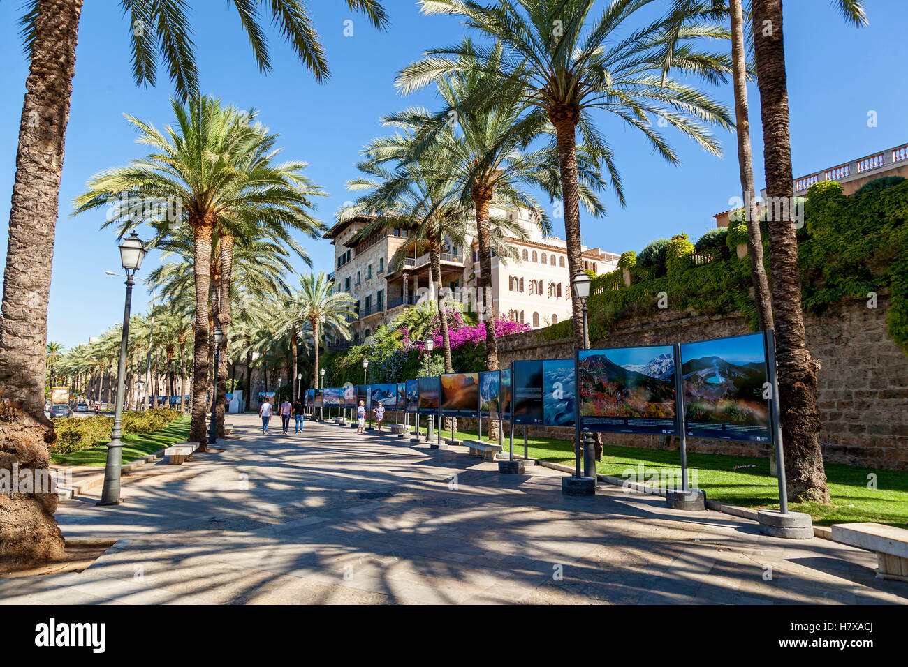 Spain 23 June Palma de Mallorca street. Palma de Mallorca street on a sunny day on which walk about slowly vacationers. - Stock Image