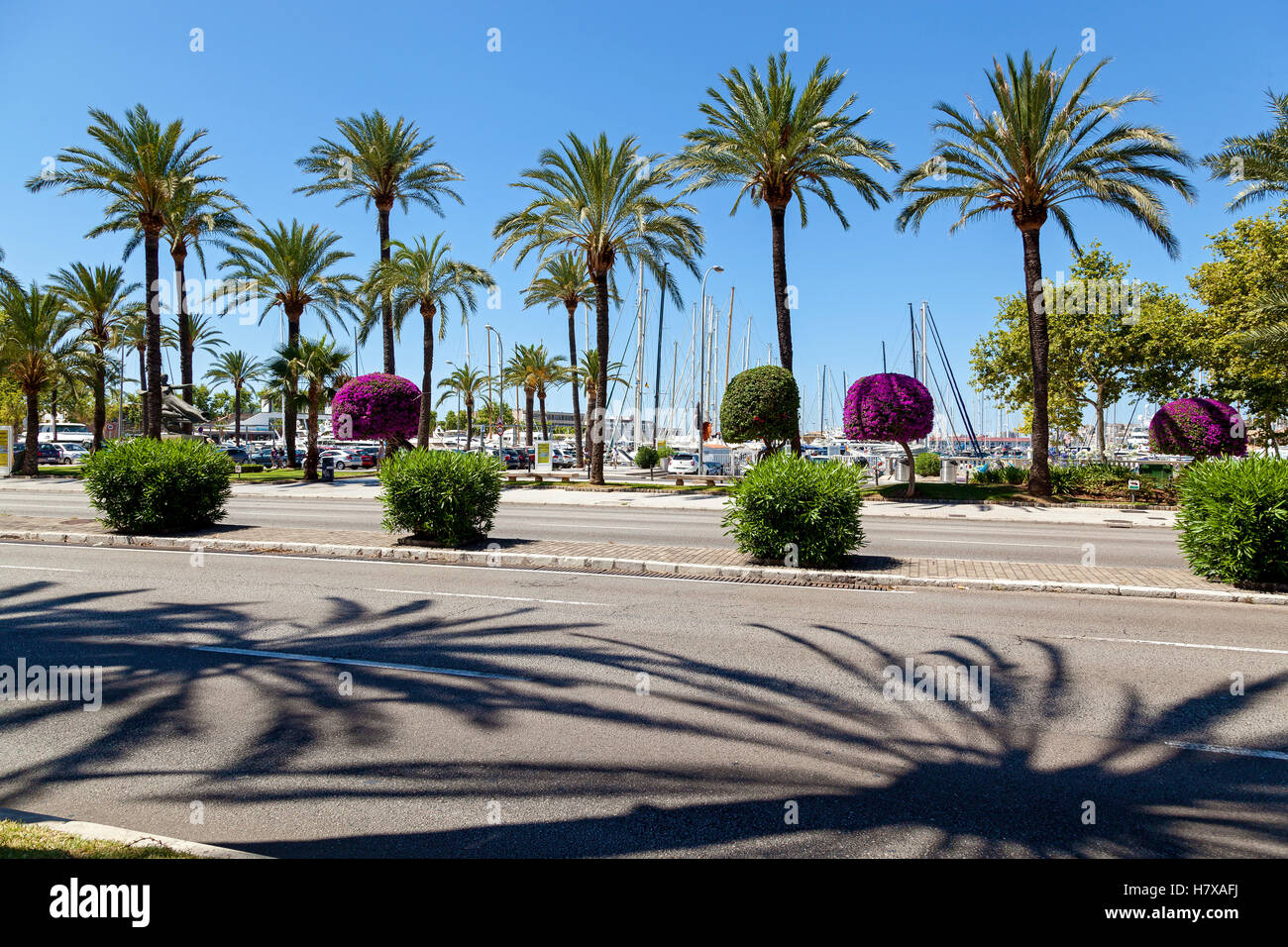 Quay in Palma de Mallorca. Quay in Palma de Mallorca on a sunny day that offers views of the port and plenty of - Stock Image