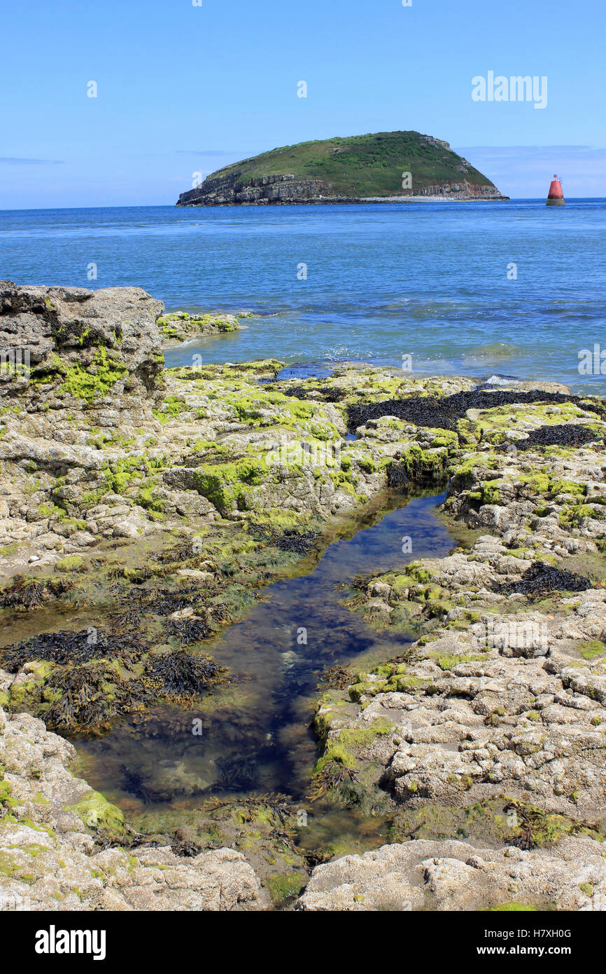 Puffin Island at Penmon Point, Anglesey, Wales, UK Stock Photo
