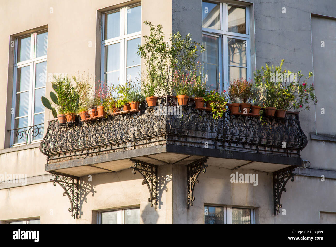 Brussels, Belgium, balcony with many potted plants, - Stock Image
