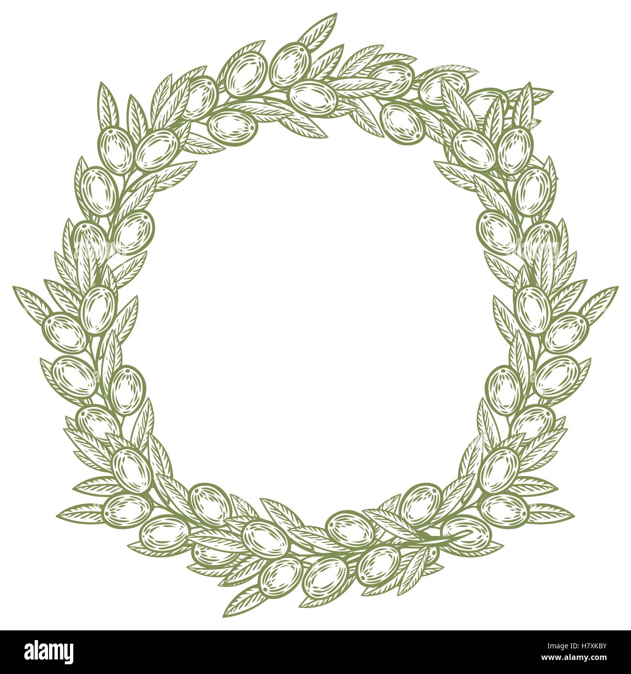 Olive laurel wreath and branch hand drawn vector illustration. Leave and berry round frame isolated on white background. - Stock Image