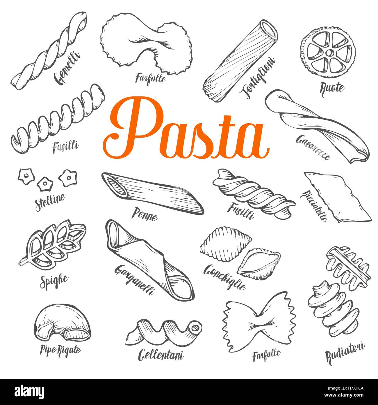 Hand drawn Italian pasta set. Collection of different types of pasta. Retro line art vector illustration. Gluten Stock Vector