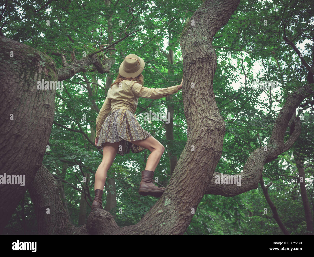 A young woman wearing a safari hat is climbing a tree in the forest - Stock Image