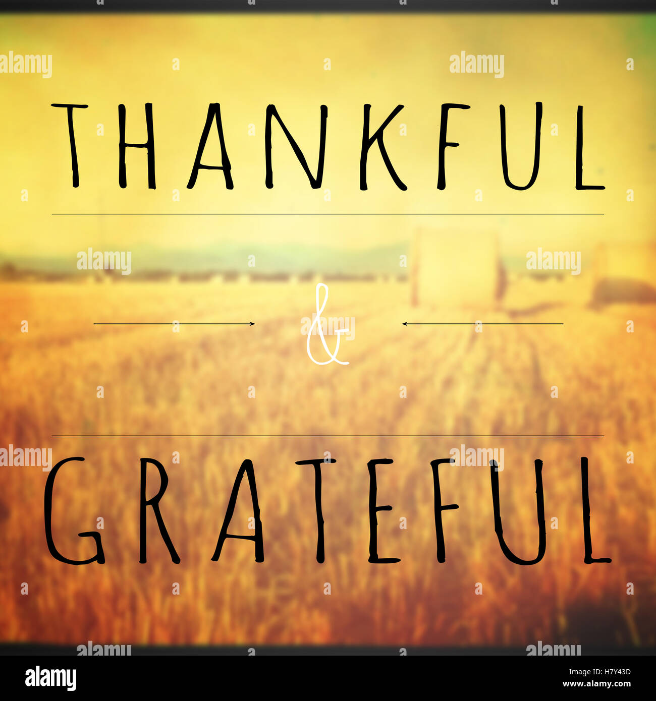 Motivational background quote with thankful and grateful text - Stock Image