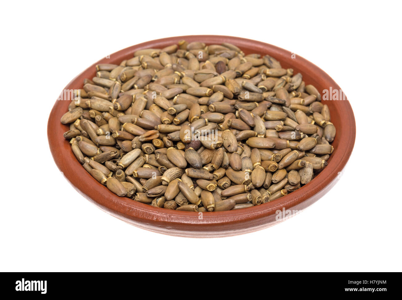 A small bowl filled with organic milk thistle seeds isolated on a white background. - Stock Image