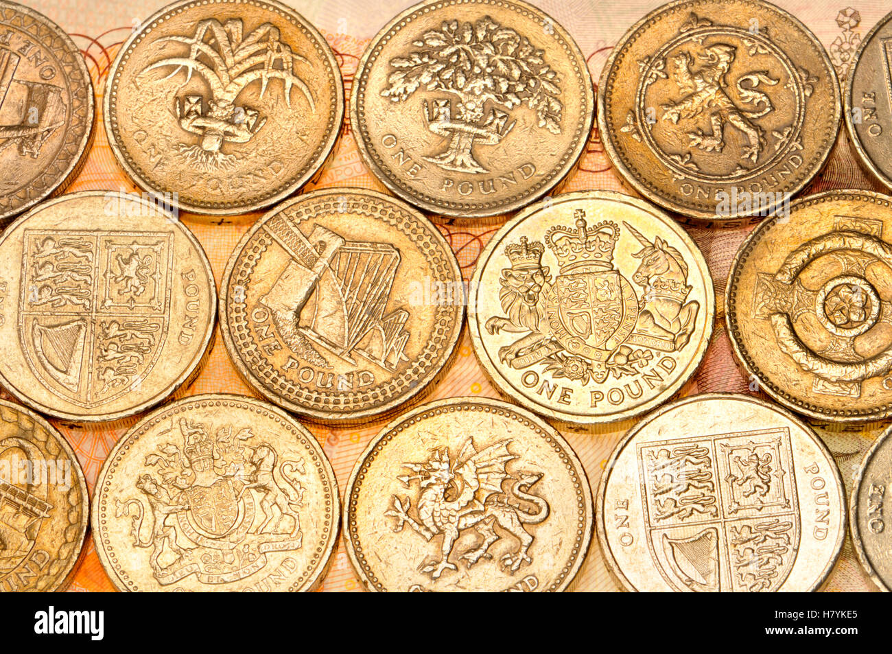 British pound coins with different designs on the reverse - Stock Image