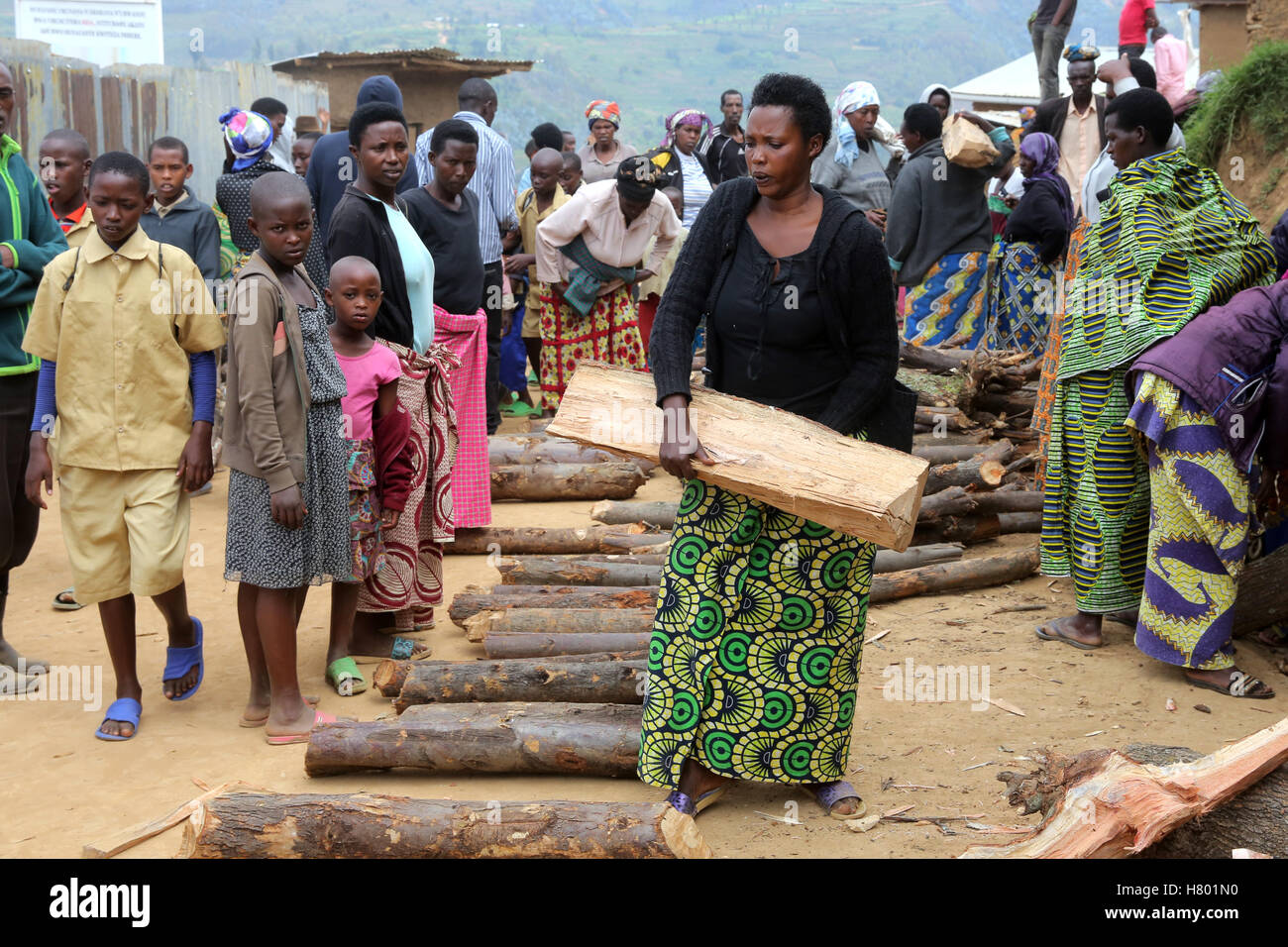 Firewood distribution to the families in the UNHCR refugee camp Kigeme, Diocese of Gikongoro, Rwanda, Africa - Stock Image