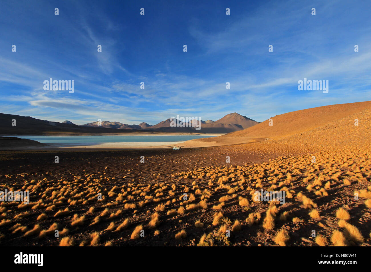 Laguna verde, green lagoon in Bolivia - Stock Image