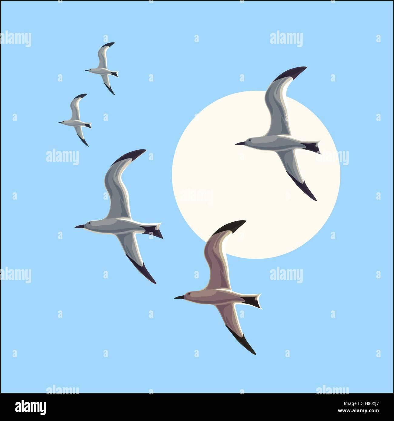 Seagull in flight against the blue sky - Stock Vector