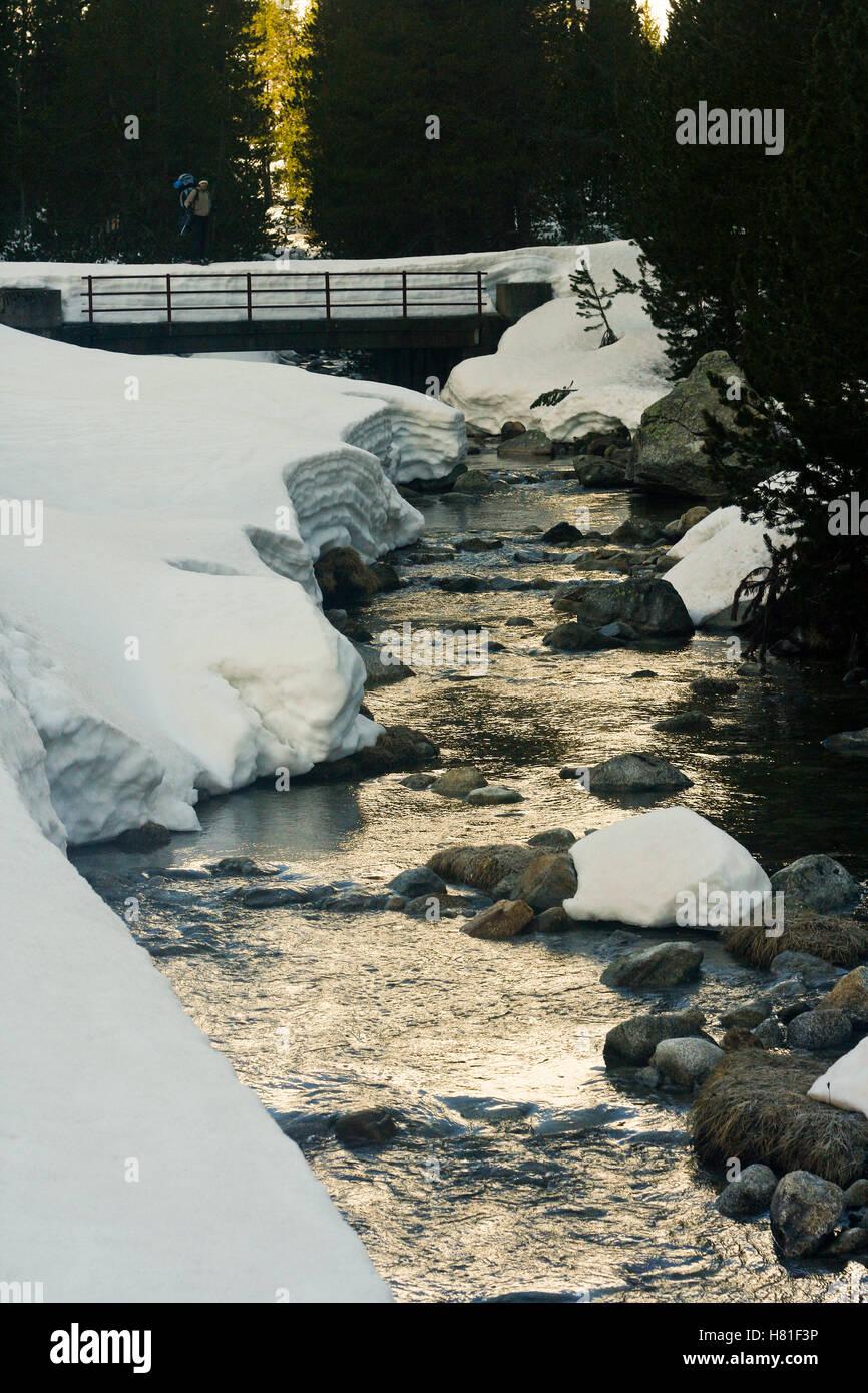 Aiguamog river. Banhs de Tredos. Pyrenees. Lleida, Catalonia. Spain - Stock Image