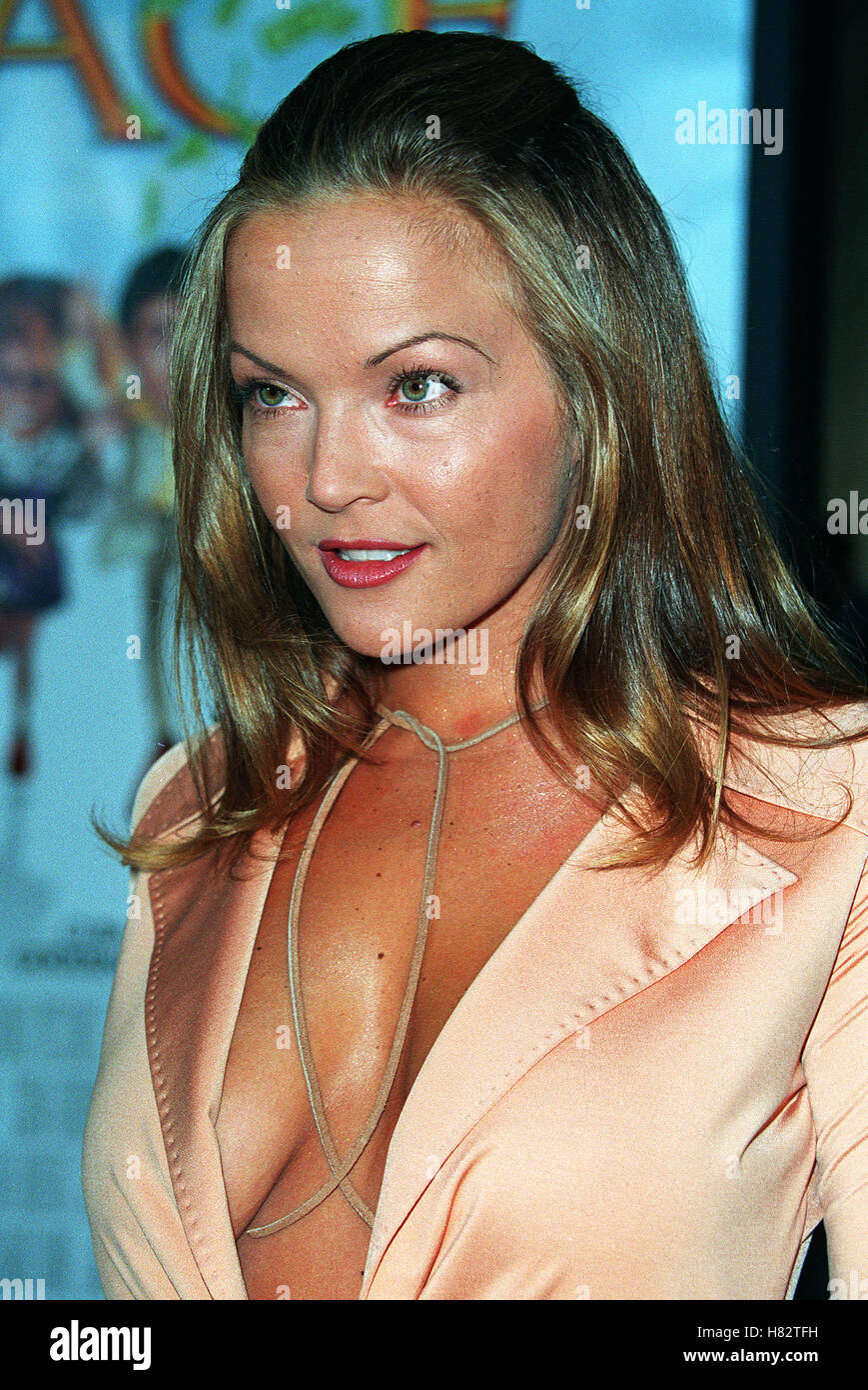 Brandy Ledford nude (11 gallery), cleavage Sideboobs, Twitter, swimsuit 2020