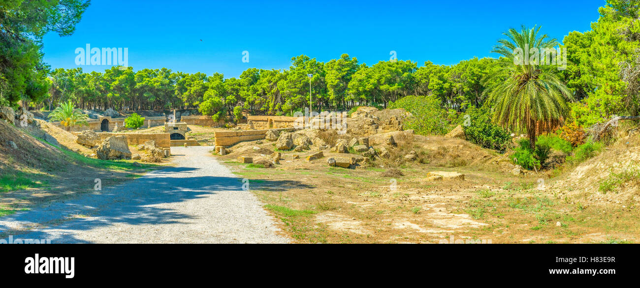 The ancient ruins of the  amphitheatre surrounded by green park of coniferous trees, Carthage, Tunisia. - Stock Image