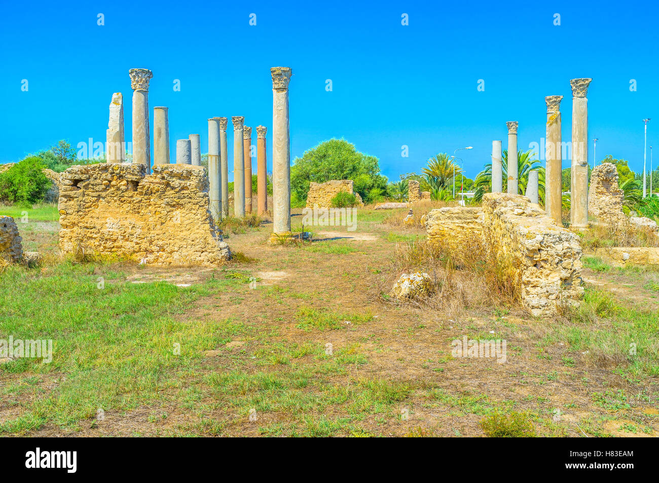 The rows of columns are the preserved part of the Punic temple in Carthage, Tunisia. - Stock Image