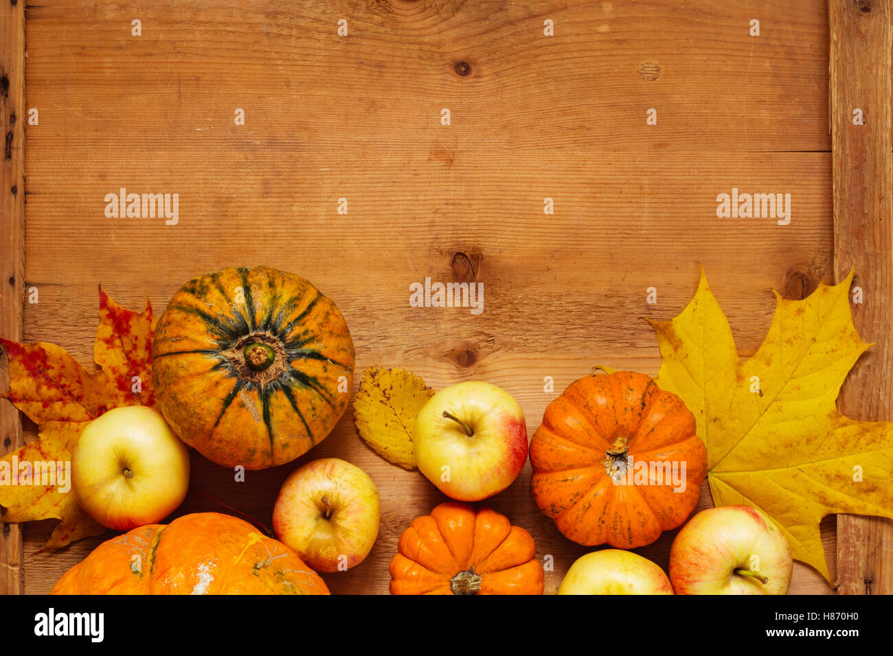 Thanksgiving background: variety of pumpkins, apples and fallen leaves on wooden table with copy space for text. - Stock Image