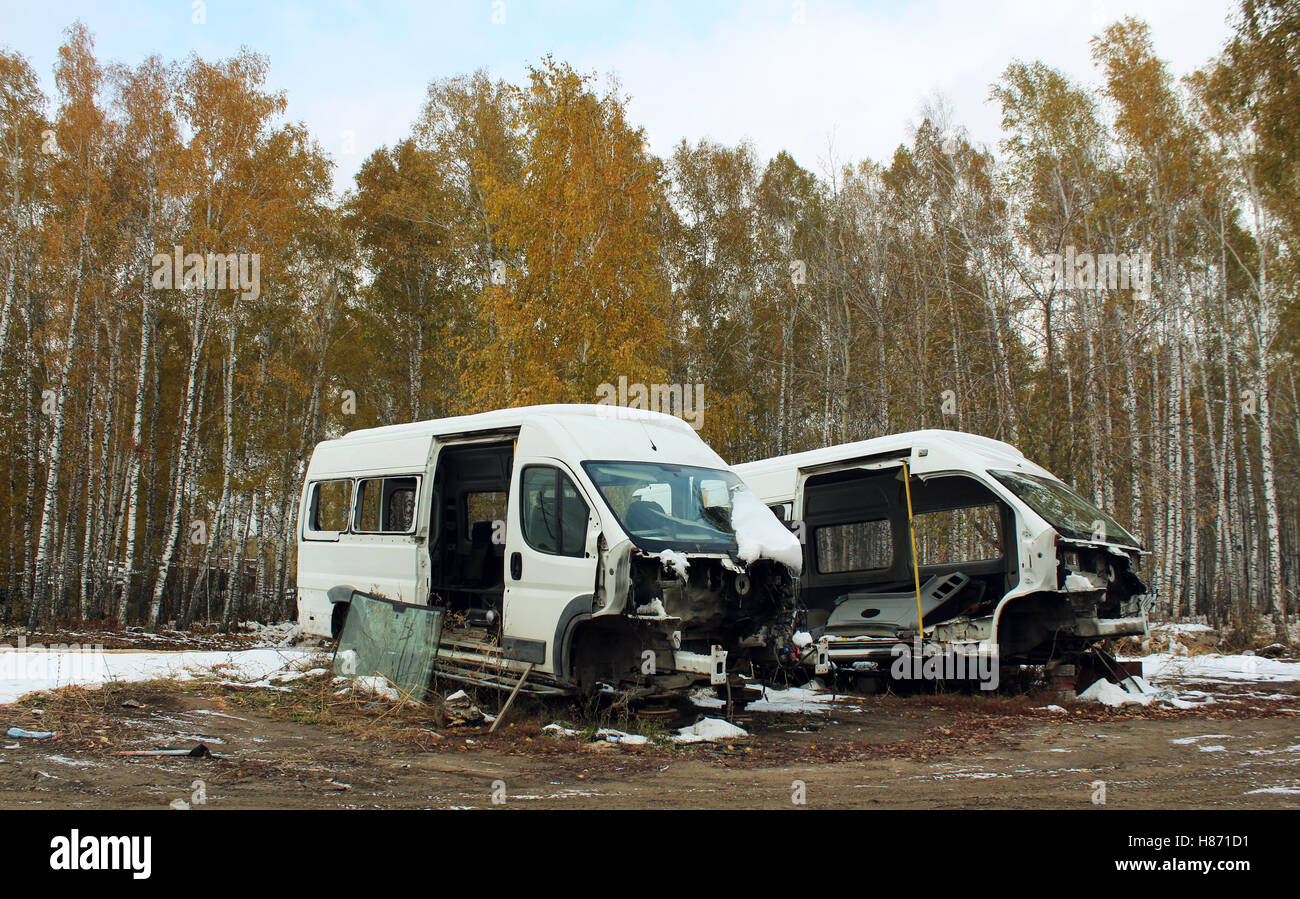 Disassembled cars after the accident in the forest - Stock Image