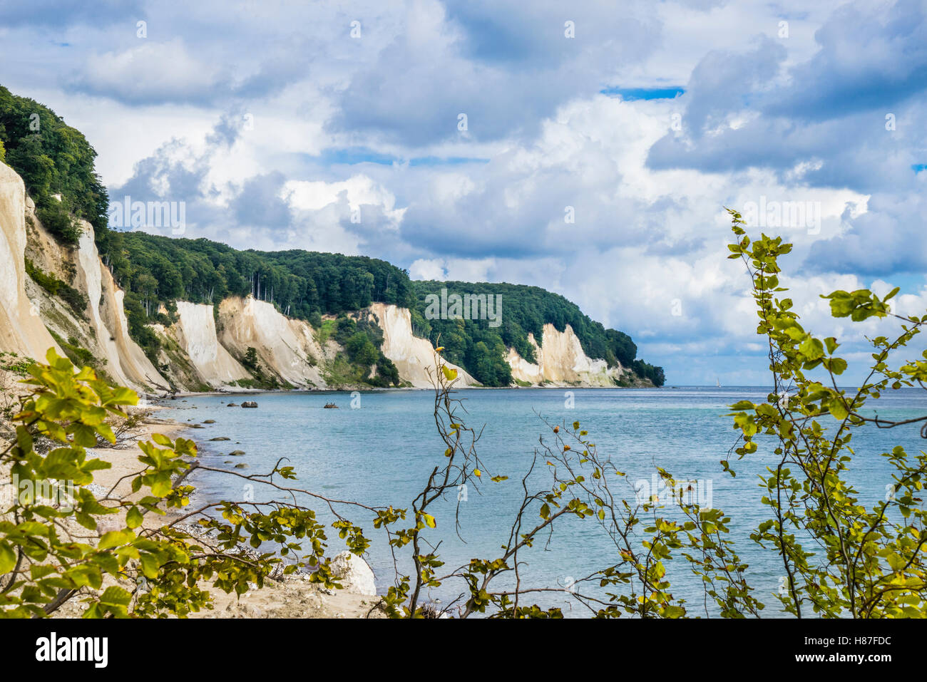 chalk cliff coast Jasmund National Park, near Königsstuhl (King's Chair) on the island of Rügen, Mecklenburg-Vorpommern, Stock Photo