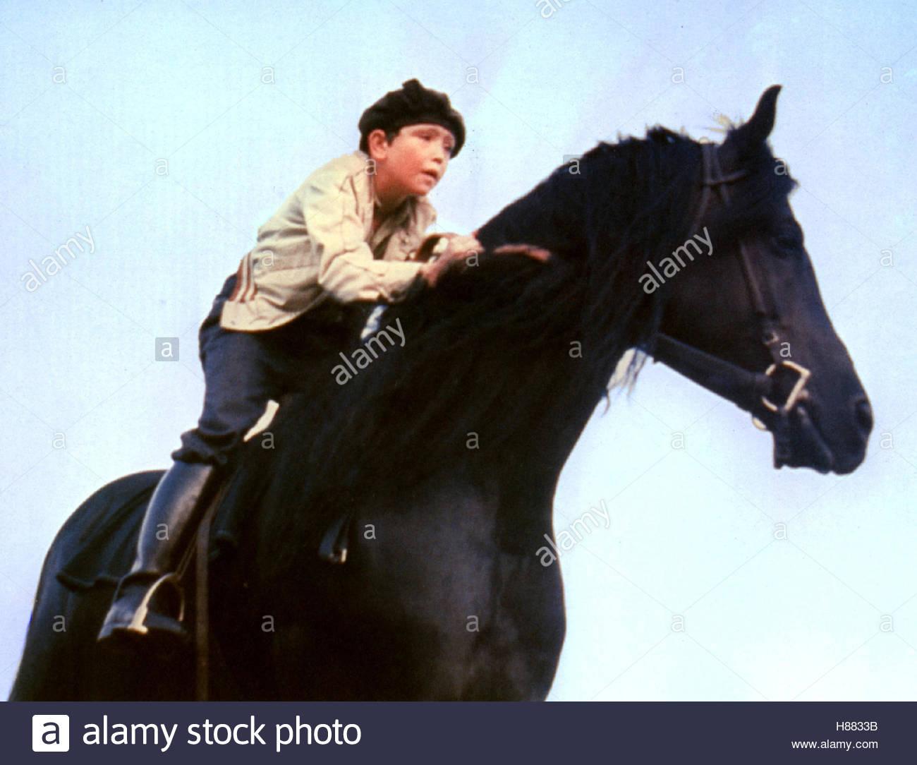 Der schwarze Hengst, (THE BLACK STALLION) USA 1979, Regie: Carroll Ballard, KELLY RENO, Stichwort: Pferd, Reiter - Stock Image