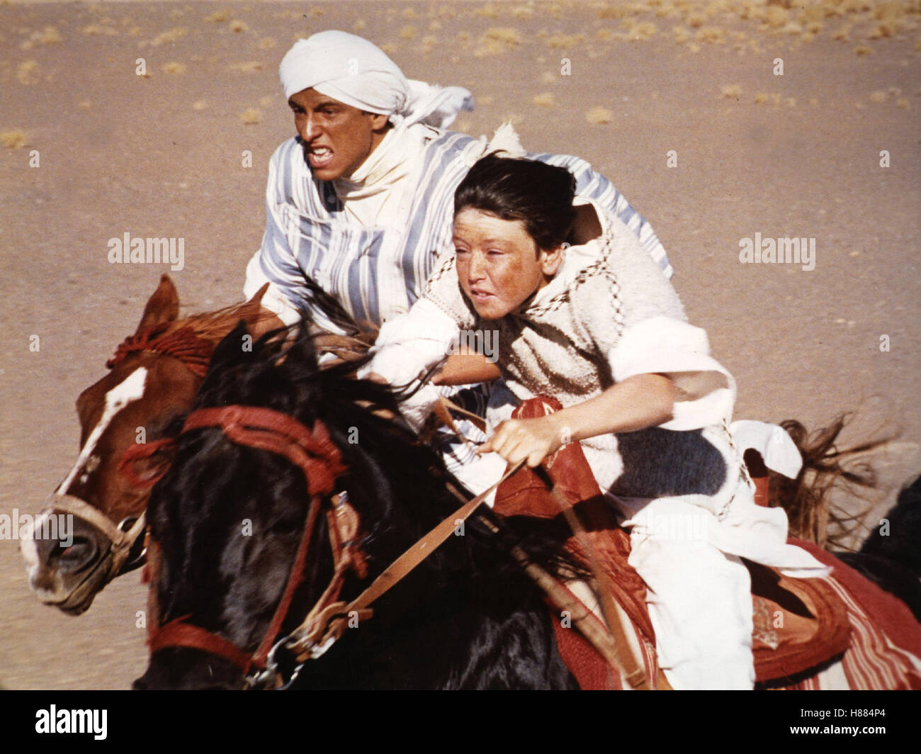 Der schwarze Hengst kehrt zurück, (THE BLACK STALLION RETURNS) USA 1981, Regie: Robert Dalva, VINCENT SPANO, - Stock Image