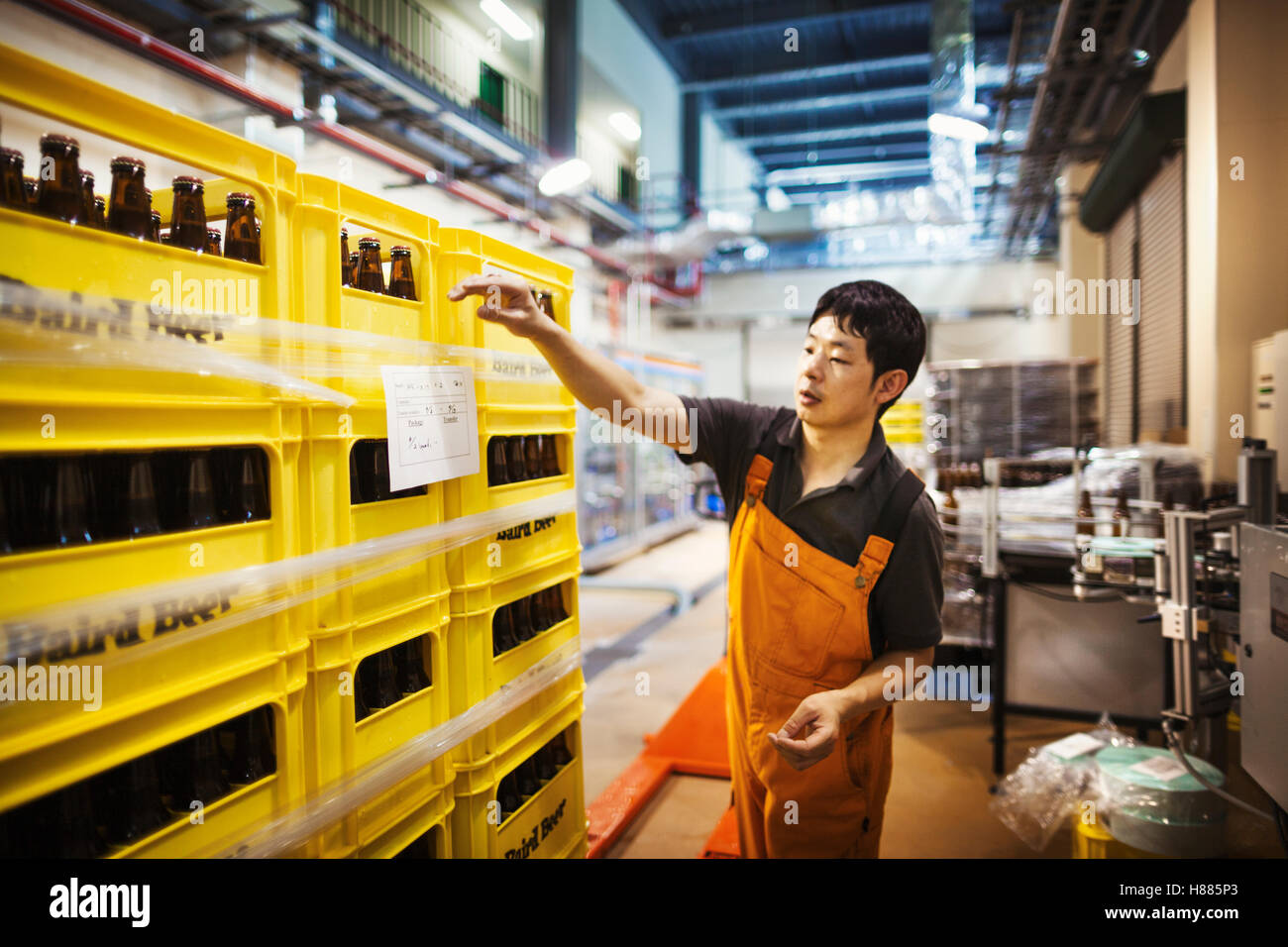 Worker labelling yellow plastic crates with beer bottles in a brewery. - Stock Image