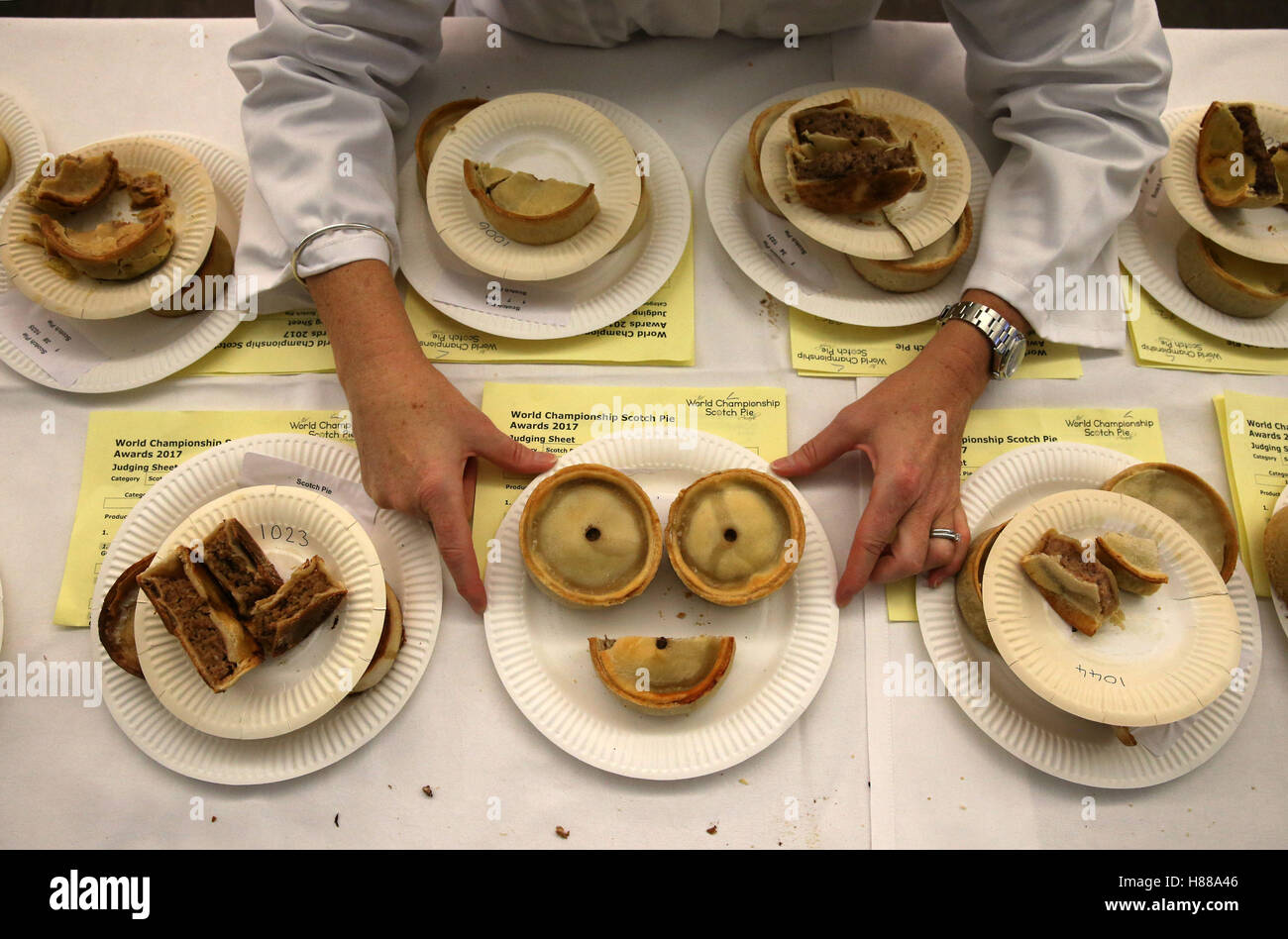 Alexis Craig, one of the organisers of the World Scotch Pie Championship, examines some of the entries at the Carnegie - Stock Image