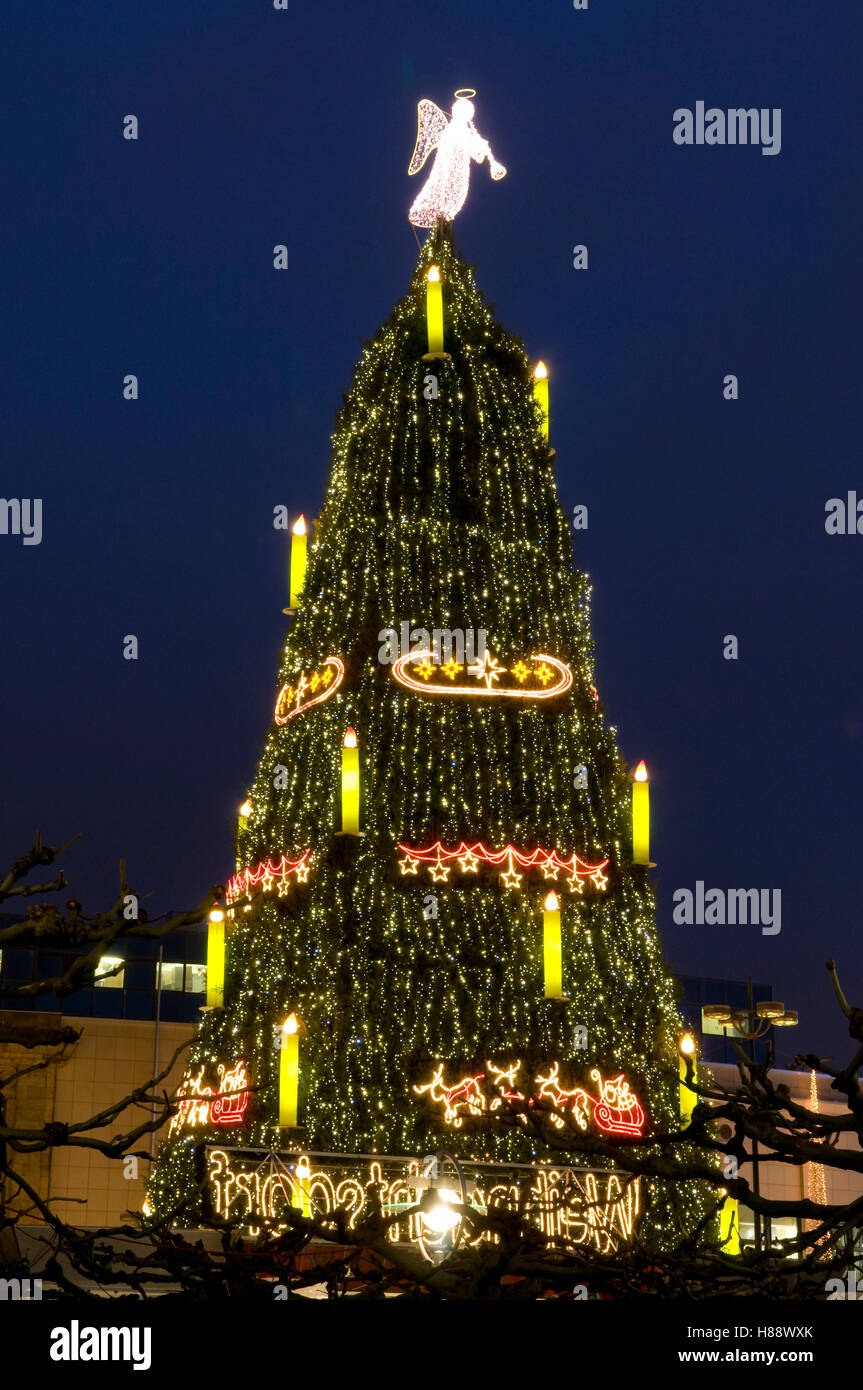 the biggest christmas tree in the world at the christmas market in dortmund ruhrgebiet area - Biggest Christmas Tree
