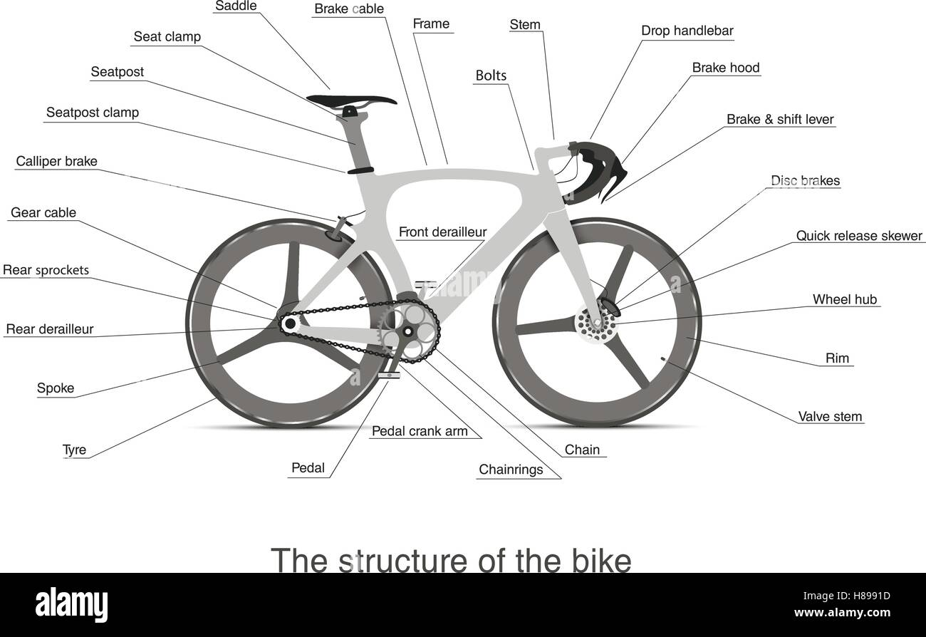 infographic of the main bike parts with the names Stock Vector Art