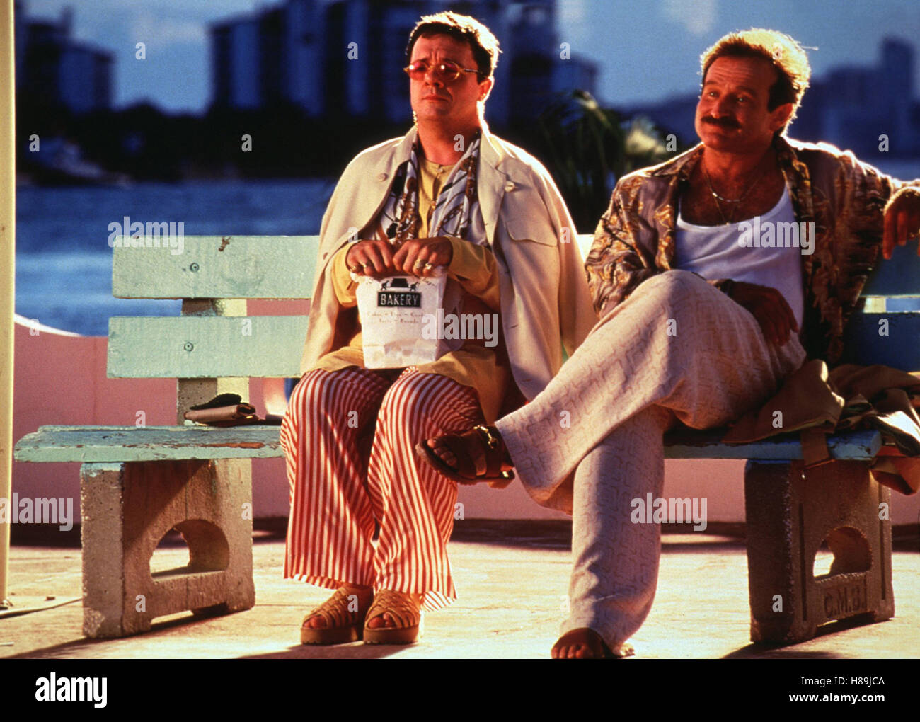 Birdcage - Ein Paradies für schrille Vögel, (BIRDCAGE) USA 1996, Regie: Mike Nichols, NATHAN LANE, ROBIN - Stock Image